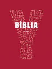 Bíblia Jovem - Youcat - Seleção de textos - Capa cristal 014f11edf2e